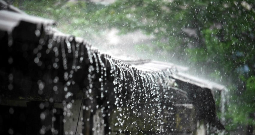 Rainiest Places In India