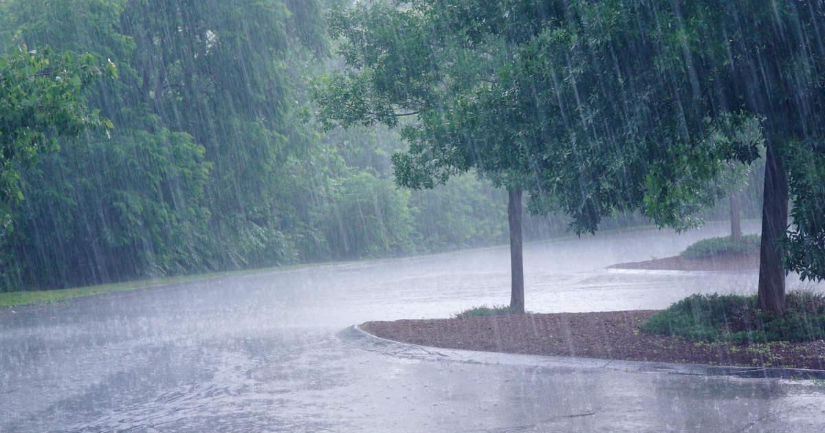 Southwest Monsoon 2020