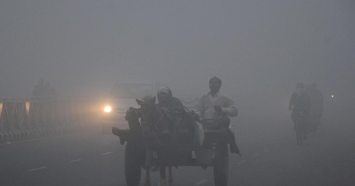 [Hindi] उत्तर भारत में 17 जनवरी को सर्दी से कुछ राहत, 18 जनवरी से फिर कहर ढाएंगी बर्फीली हवाएं