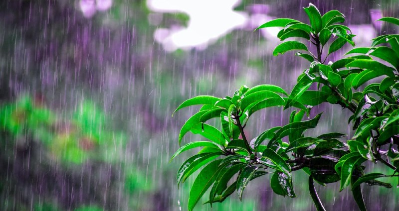 Monsoon Forecast 2021