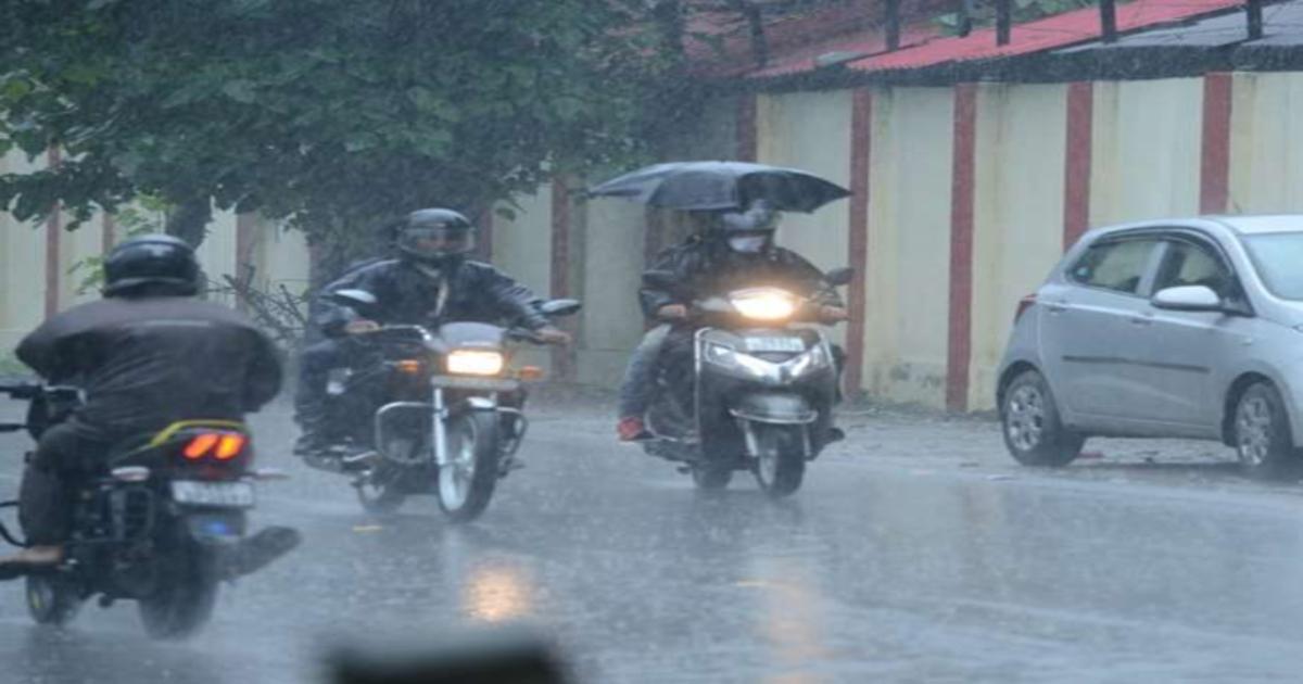 MP Rain FB