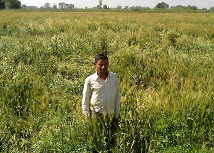 Konch, Uttar Pradesh