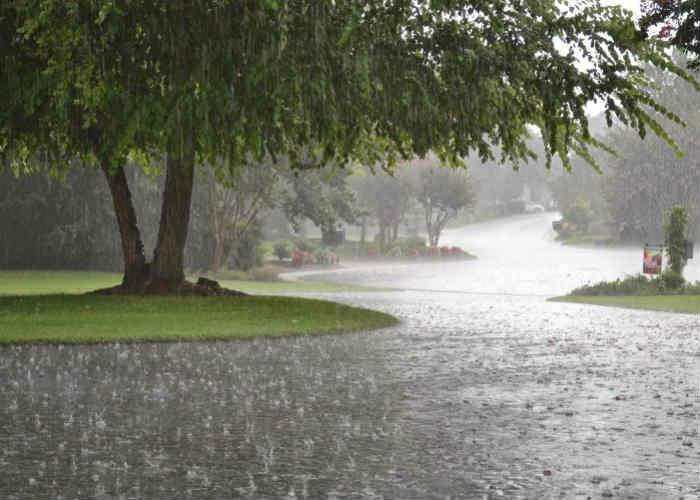 Hope for rain