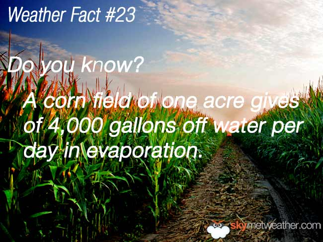 Weather Fact #23